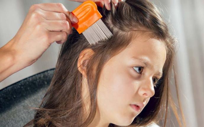 Wszawica - jak wygrać z inwazją we włosach?