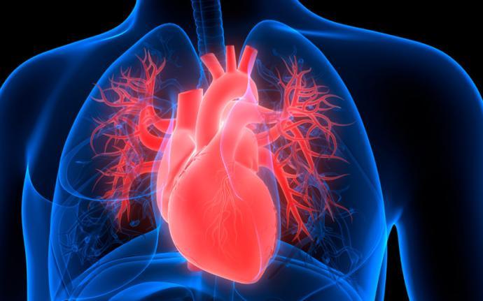 Wady zastawek serca